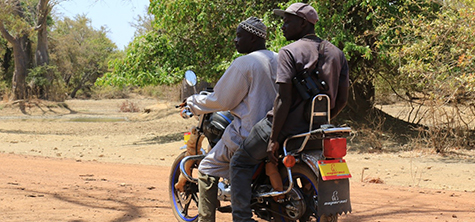 Gambia monkeys project invests in motorbikes and radios for rangers during Covid-19