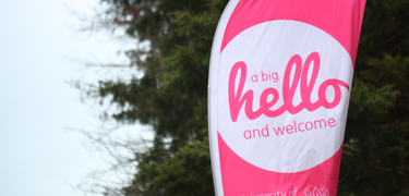 'hello' welcome sign